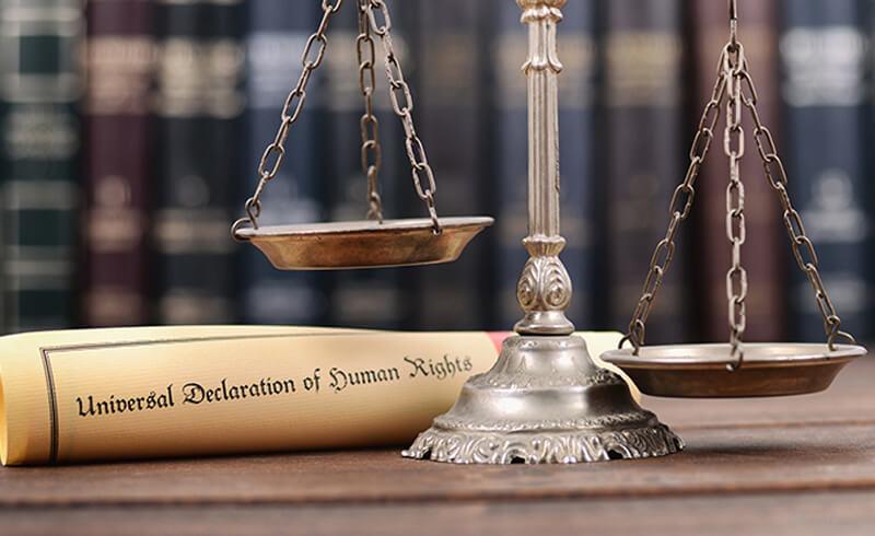 Human Rights Tribunal